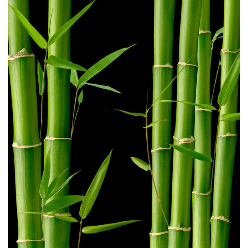yodeyma bamboo