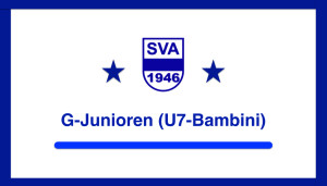 SVA Teamfarben GJ