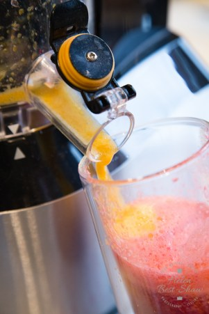 A high end, robust masticating juicer. ideal for volume and daily use.