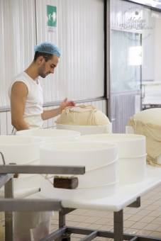 Wrapping and moulding Grana Padano PDO