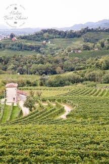 The Italian countryside that Prosecco comes from
