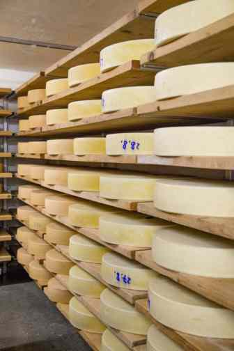 The cheese is matured on wood boards