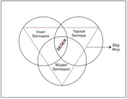 Entelektüel Sermaye Bileşenleri Değer Platformu Modeli Kaynak: Edvinsson, Leif - Malone, Michael S. : Intellectual Capital, Harper Collins Pub., U.S.A., 1997, S.146