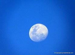 La luna presenciaba el partido