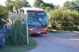 omnibus paysandu