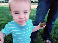 Liam has a tree ball!