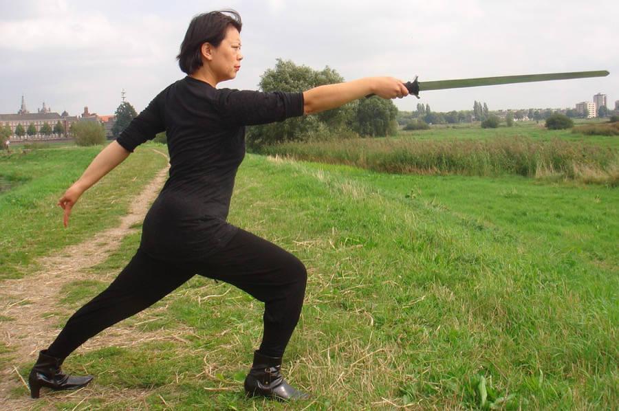 Shaolin Kung Fu: Acerte sua base!
