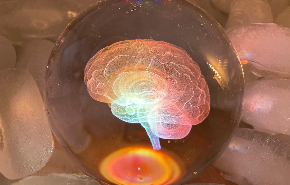 Chilled Brain