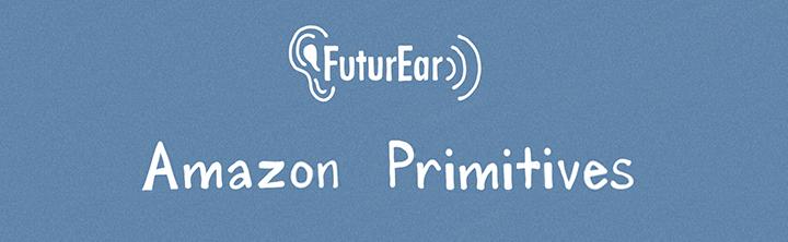 10-14-19 - Amazon Primitives