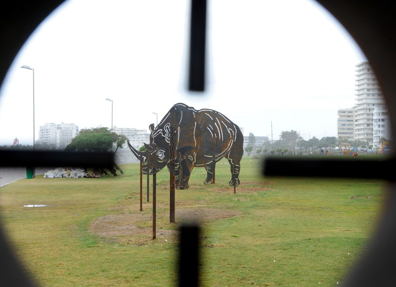 Image through the viewfinder of Andre Carl's installation on the Sea Point Promenade (photo courtesy of Anna Brown)