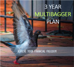 3 year multibagger plan india stock market