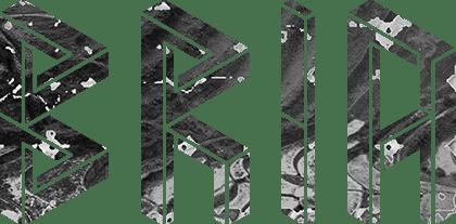 BRIA company logo
