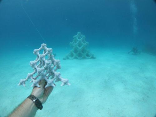 How 3D Printing is Helping to Save Dying Coral Reefs