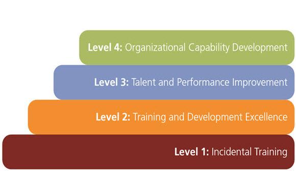 Utvecklingen mot en effektiv lärande organisation
