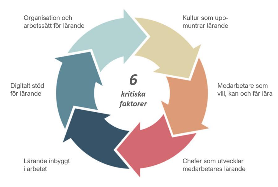 6 kritiska faktorer för att utveckla en lärande organisation
