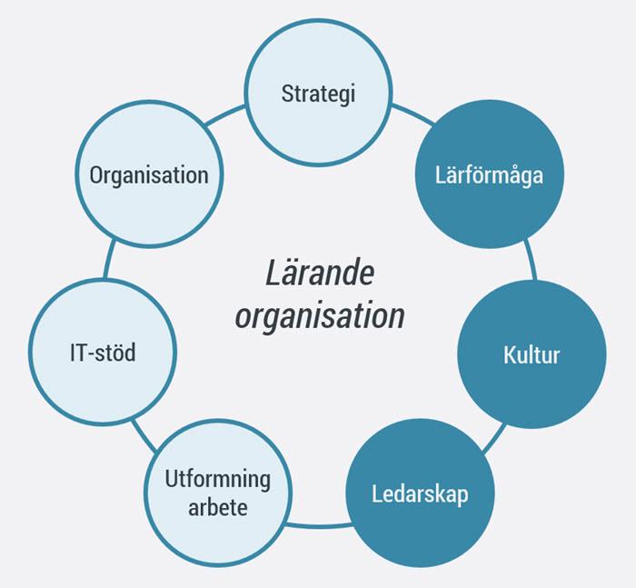 Skapa en lärande organisation