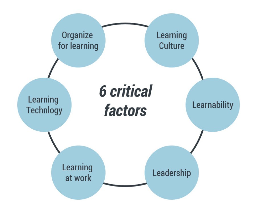 6 critical factors for developing a learning organization