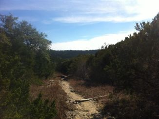 Forest-Ridge