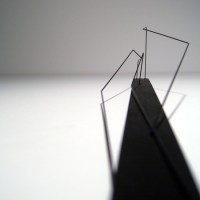 Study Models - Andrew K Green