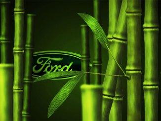 Ford pesquisa o uso do bambu