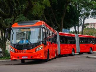 65 ônibus Volvo para Curitiba