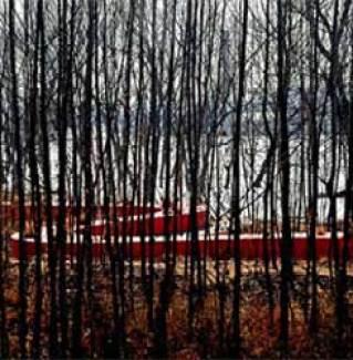 Tanghe Nehri kıyılarında kırmızı kuşak