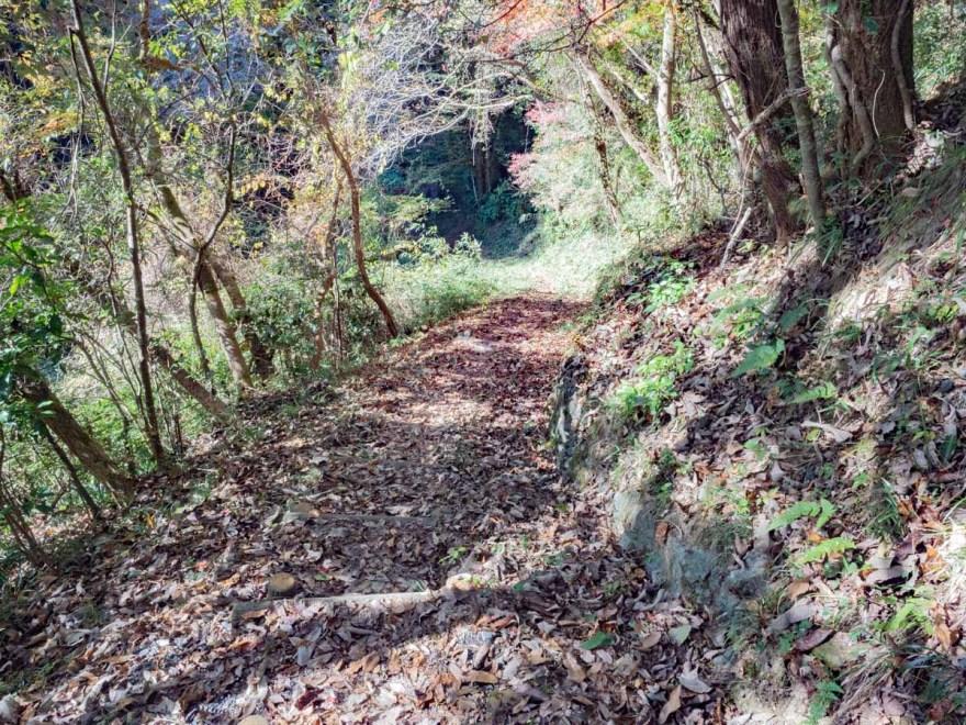 血洗の滝・血洗滝神社:滝へ降りる道