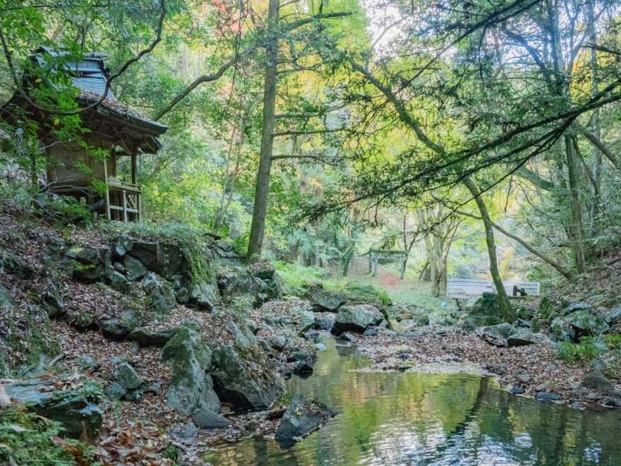 血洗の滝・血洗滝神社:血洗の滝の前から血洗池方面を見る
