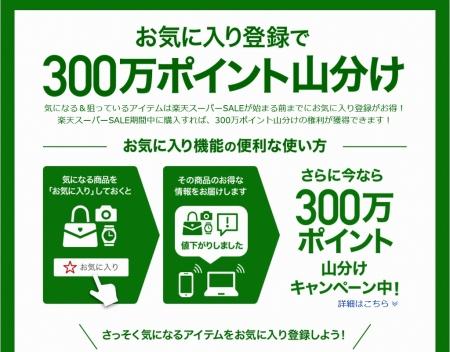 20170831_楽天セール05a