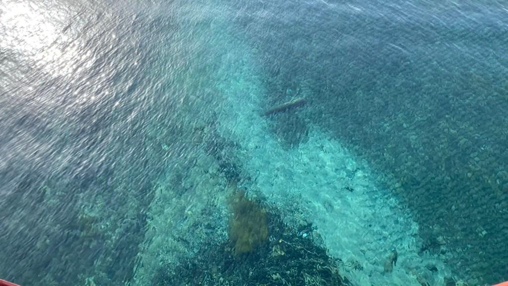 支笏湖の透明感