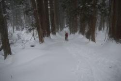 深雪の参道を行く
