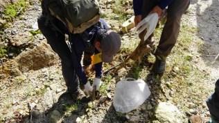 埋もれた廃棄物も回収