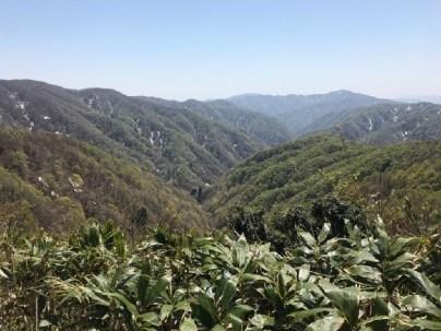 音波山からの南側眺望