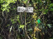 桑ヶ谷頂上