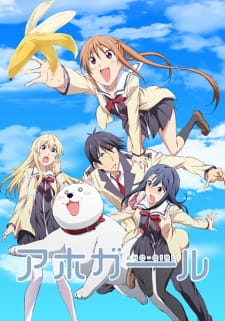 Aho Girl Batch Sub Indo BD