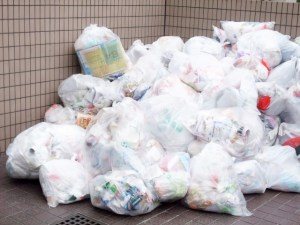 ゴミ処分の日 茨城 水戸