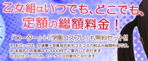 お得な「夜乙女パック」でも本指名すると2,000円アップ、東京乙女組のHPより