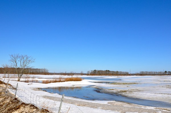 Riverhead sod farm in winter