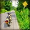 fuzzygalore royal enfield motorcycle