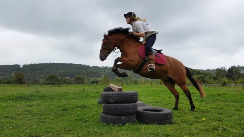 Dobby the field elf and Ruby jumping