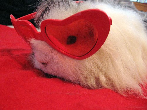 Happy Valentines Day Fuzzy Today