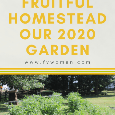 Fruitful Homestead: Our 2020 Garden!