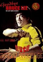 Bruce Lee: Ostatni Pojedynek zalukaj lektor