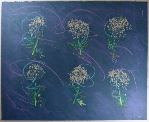 A chalkboard like background creates the feel for this print as six flowers, three in two rows, appear to be drawn with chalk.