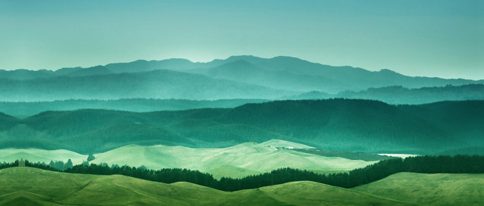 HTC One M9 wallpaper gallery feature