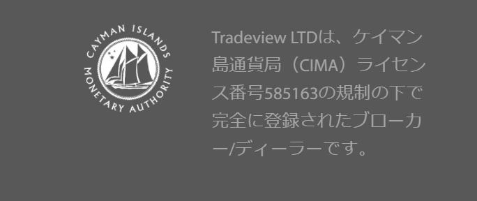 Tradeview 金融ライセンス 詳細