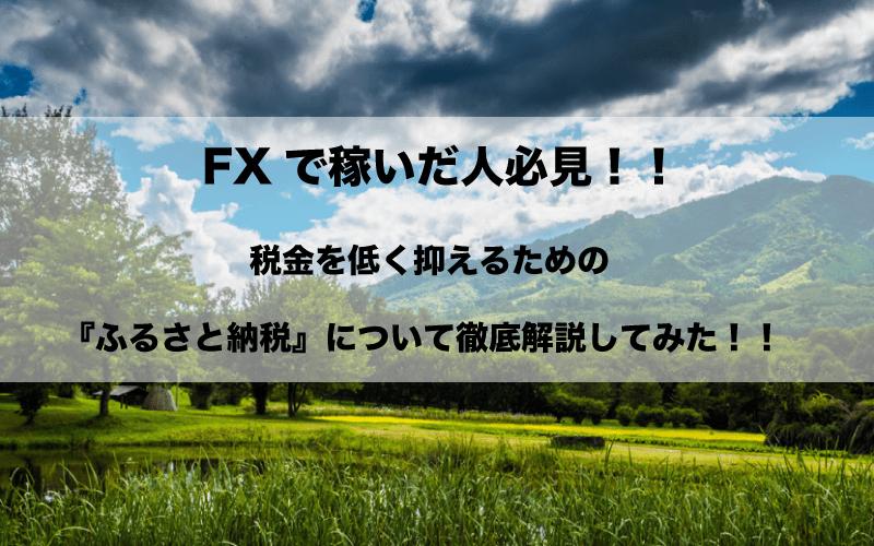 FX ふるさと納税