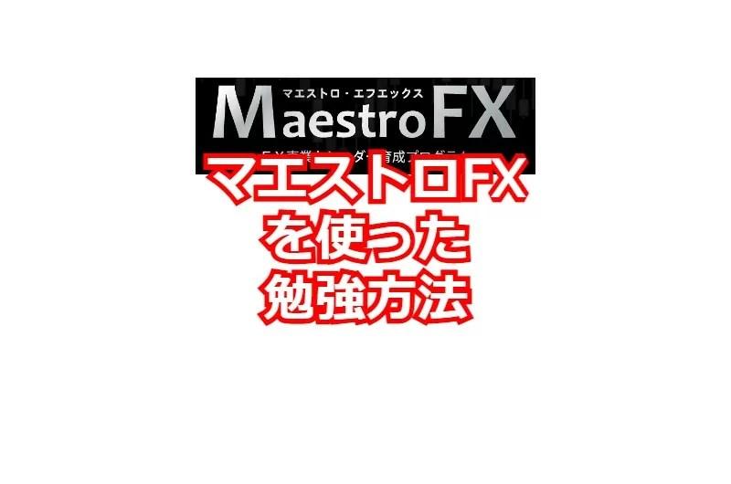 マエストロFXを使った勉強方法