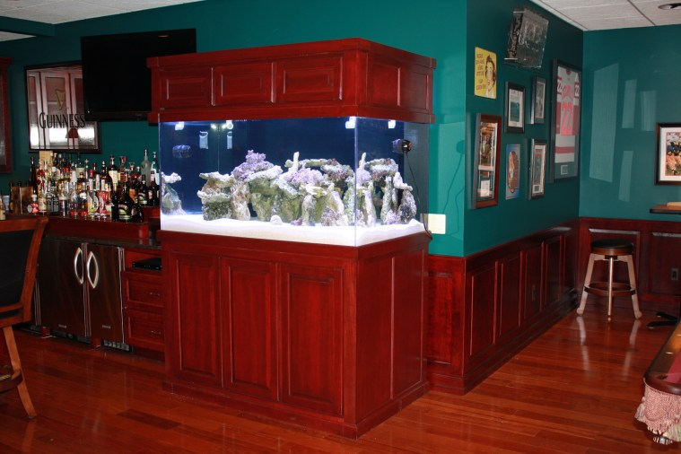 Large Saltwater Aquarium