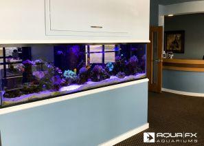 Aqua FX Built Reef Aquarium